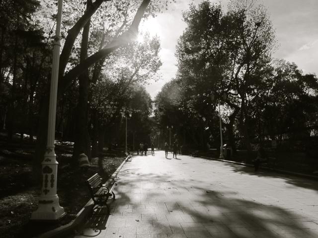 Still in Gülhane park