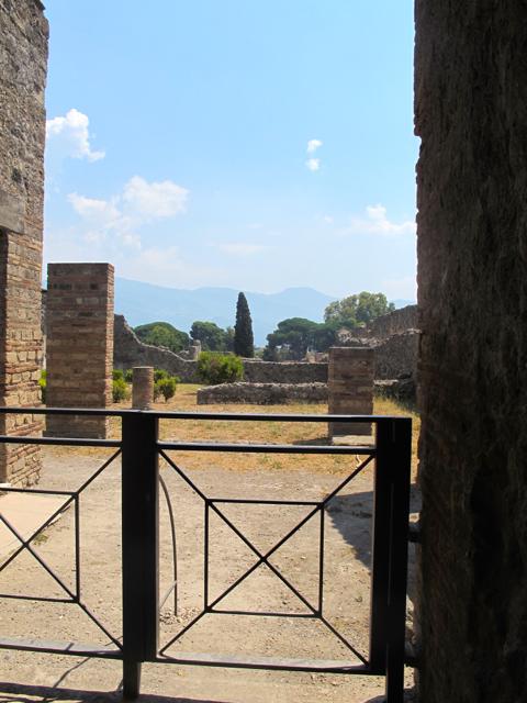 ozinparis-pompeii-12
